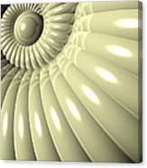 Shell Of Repetition Canvas Print