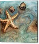 Shells With Star Canvas Print