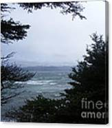Shelter From Irene Canvas Print