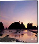 Shi Shi Beach Canvas Print