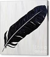Shiny Feather Canvas Print