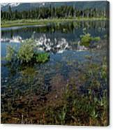 Shore Reflections Of Mt Tallac Canvas Print