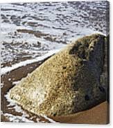 Shoreline Rock Canvas Print
