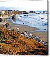 Shores Of Oregon Canvas Print