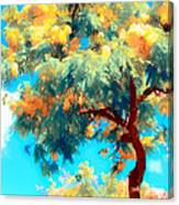 Shower Trees Canvas Print