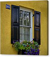Shutters And Window Boxes Canvas Print