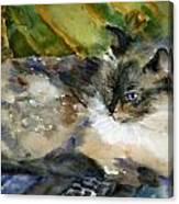 Siamese Basking Canvas Print