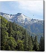 Sierra First Snow Canvas Print