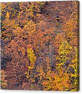 Sierra Nevada National Park Canvas Print