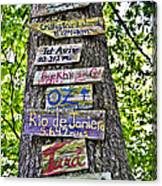 Signs On A Tree Canvas Print