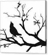 Silhouette Bird On Branch - To License For Professional Use Visit Granger.com Canvas Print