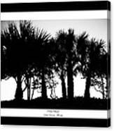Silhouette Palm Sunset Canvas Print