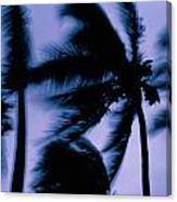 Silhouetted Palm Trees Blow In The Wind Canvas Print