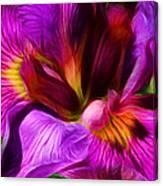 Silk And Satin Canvas Print