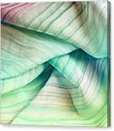 Silk Scarf Canvas Print