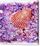 Silver Bells And Cockle Shells . . . Canvas Print