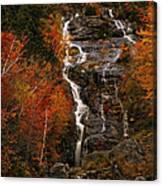 Silver Cascade Canvas Print