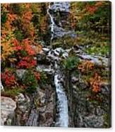 Silver Cascades Surrounded By Colors Canvas Print