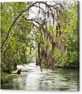 Silver Springs River In The Rain 2 Canvas Print