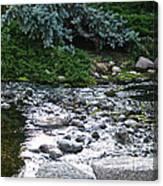 Silver Stream Canvas Print