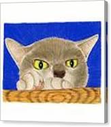 Simon 1 Canvas Print