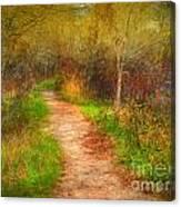 Simple Pathways Canvas Print