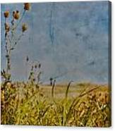 Singing In The Grass Canvas Print
