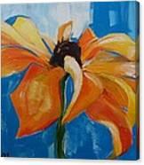 Single Cornflower Canvas Print