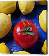 Single Tomato With Lemons Canvas Print