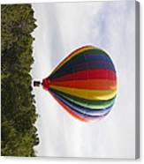 Skimming The Treetops Canvas Print