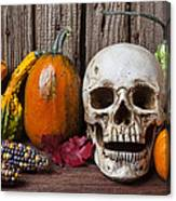 Skull And Gourds Canvas Print