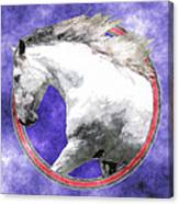 Sky Andalusian Canvas Print