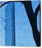 Sky Scraper Tall Building Abstract With Windows Tree And Reflections No.0066 Canvas Print