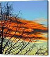 Sky Scratcher Canvas Print