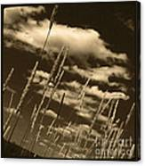 Sky Writer Canvas Print