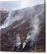 Slash And Burn Agriculture Canvas Print