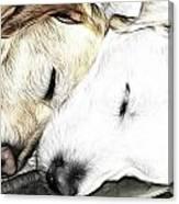 Sleeping Monsters Canvas Print