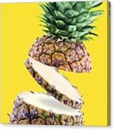 Sliced Pineapple Canvas Print