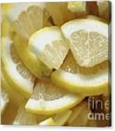 Slices Of Lemon Canvas Print