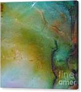 Sliding Rainbow 9 Canvas Print