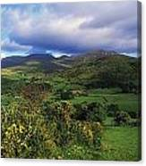 Slieve Bearnagh, Mourne Mountains, Co Canvas Print
