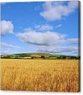 Slieveardagh Hills, Co Kilkenny Canvas Print