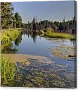 Slow Snake River Canvas Print