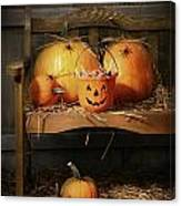 Small And Big Pumpkins On An Old Bench  Canvas Print
