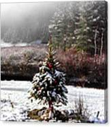 Small Christmas Tree Filtered Canvas Print