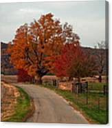 Small Country Road Canvas Print