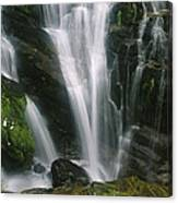 Small Waterfall Near The Milford Track Canvas Print