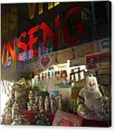 Smiling Buddha In The Window Canvas Print