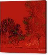 Smokey Woods Canvas Print
