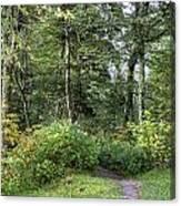 Smoky Mountain Path Canvas Print